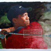 640-Tiger-Woods-B-SportsArt-GG